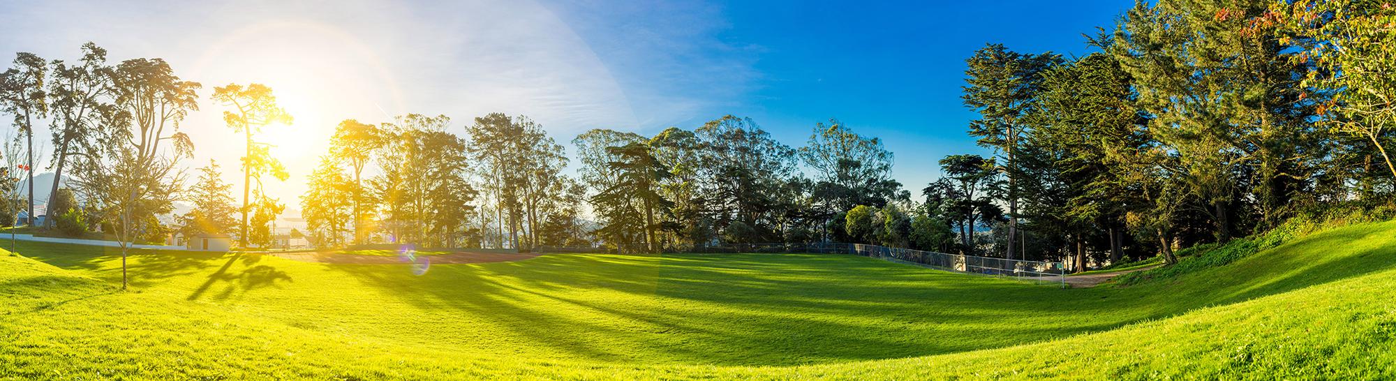 Led draagt bij aan een groen landschap