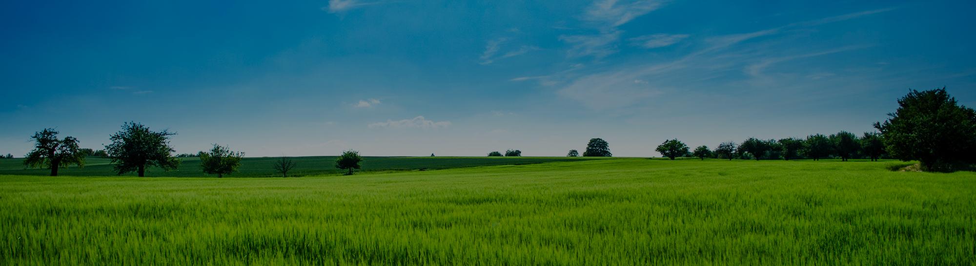 Groene verlichting voor een groenere wereld